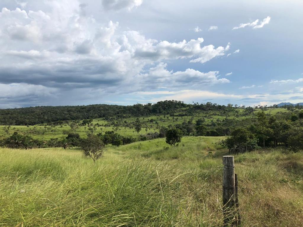 Quinta propiedad agrícola en Venta San Javier - Propiedad Ganadera Foto 2